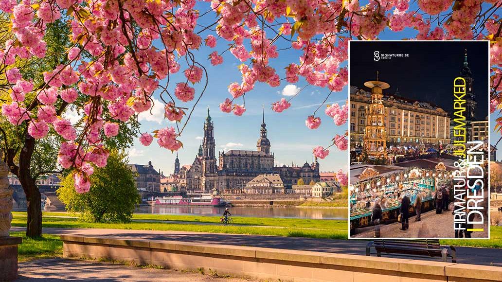 firmatur til Dresden