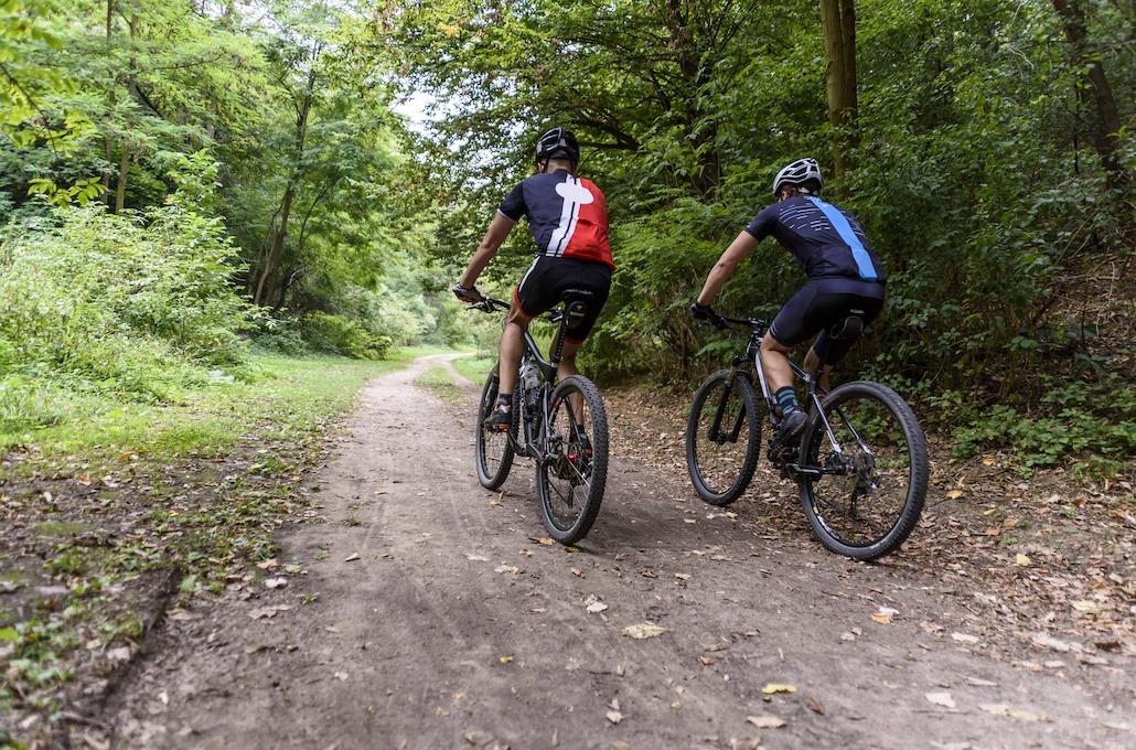 Aktivitet i Ålesund |Gruppe på sykkel |Guidet sykkeltur | Signaturreise