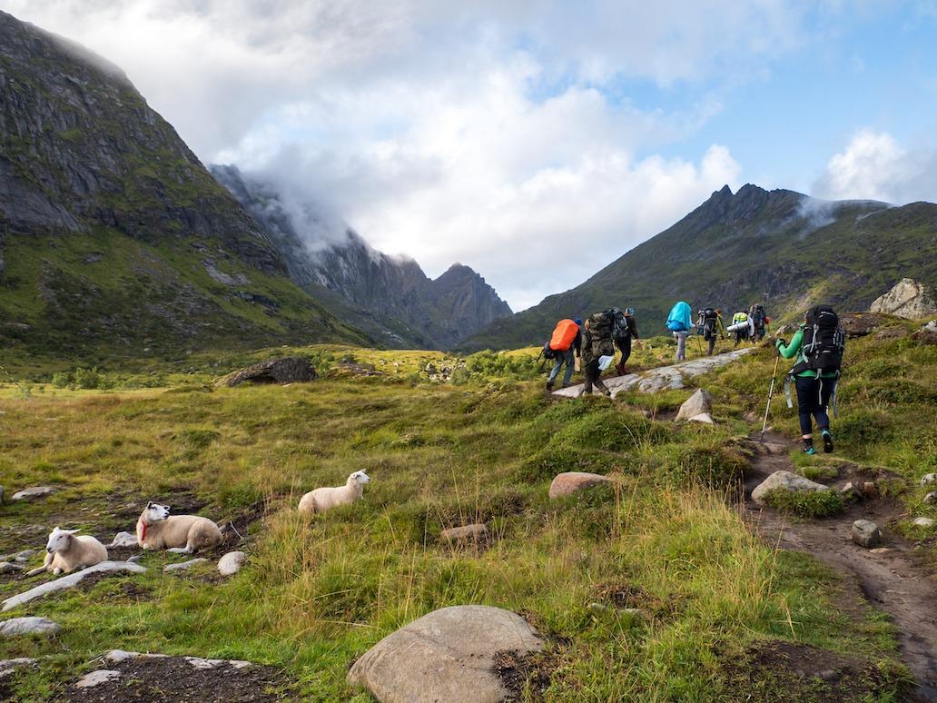aktiviteter i nord norge på firmatur og gruppereise