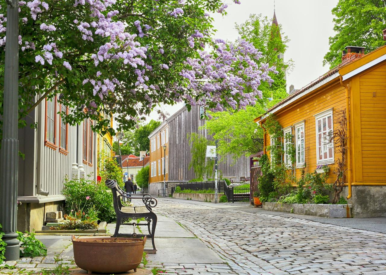 Bakklandet Trondheim Firmatur Signaturreise