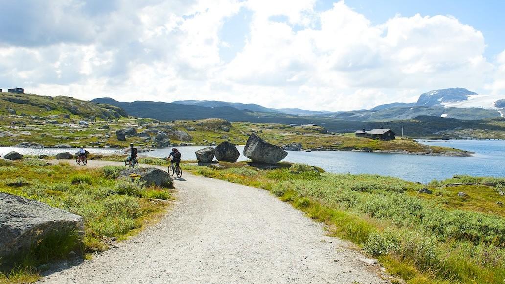 Firmatur til Ulvik | Finse | Guidet sykkeltur | Signaturreise