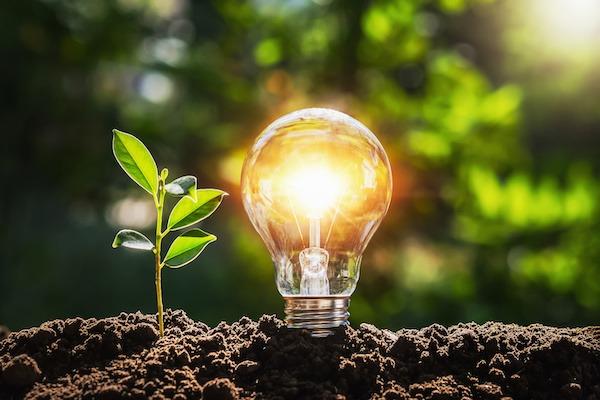 firmatur for energinæringen med elektrisitet og kraftforsyning