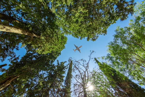 miljø fly