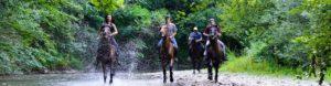 Firmatur |Hesteridning | Innlandet