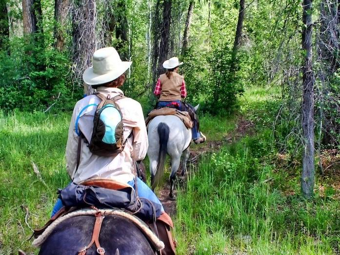 hesteridning |gjøvik |på firmatur til Gjøvik |Signaturreise