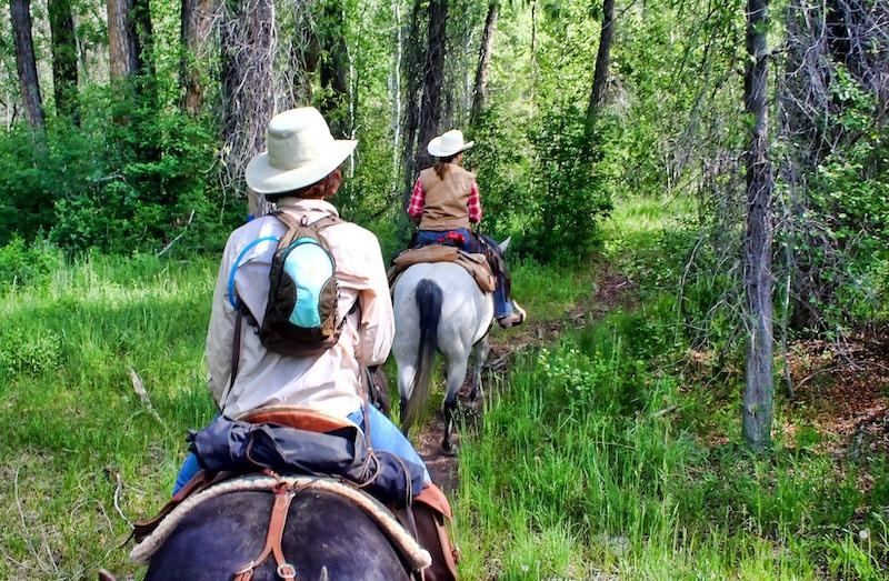 hesteridning |gjøvik |på firmatur |Signaturreise
