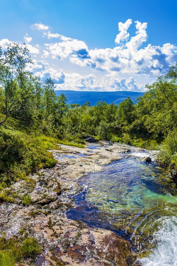 Innlandet | Signaturreise | Gruppe |Skog og mark |Guidet tur